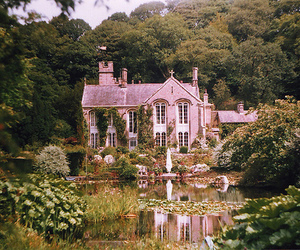 house, nature, and garden image