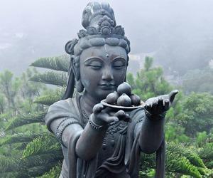 Buddha, statue, and nature image
