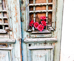faro and flowers image