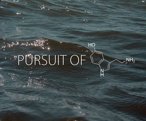 water, pursuit of happiness, and pursuit image