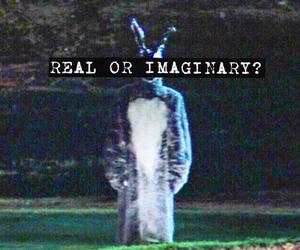donnie darko, film, and rabbit image