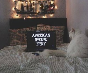 american horror story, cat, and ahs image