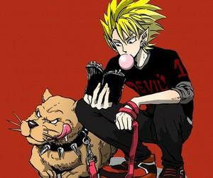 anime, cerberus, and hiruma image