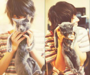 cat, boy, and emo image