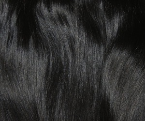 hair, black, and theme image