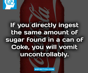 cola, sugar, and truth image