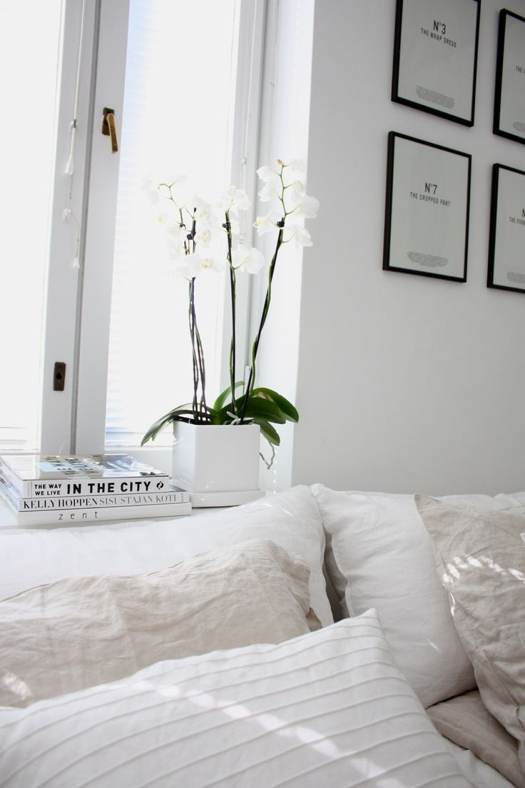 white, interior, and flowers image