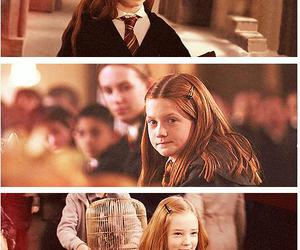 ginny weasley, harry potter, and lily potter image