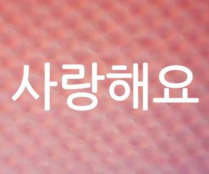 I Love You, korean, and pink image