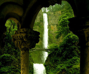architecture, nature, and victorian image