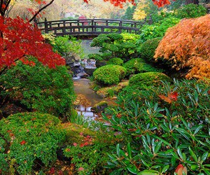 japan and japanese gerden image