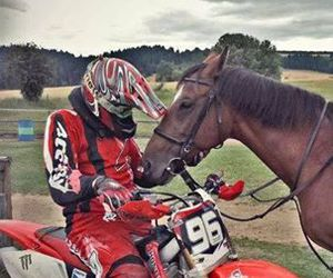 beautiful, motorbike, and horse image
