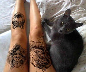 cat, tattoo, and animals image