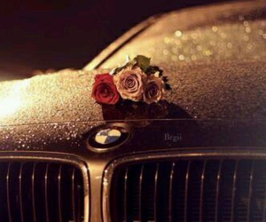 car, rose, and bmw image