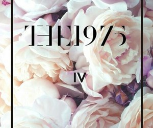 the 1975, band, and flowers image