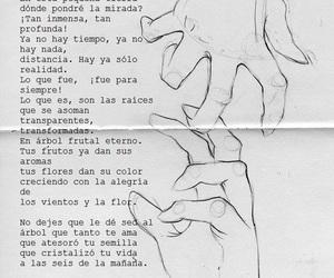 frida kahlo and no dejes image