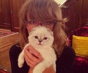 Taylor Swift, cat, and olivia image