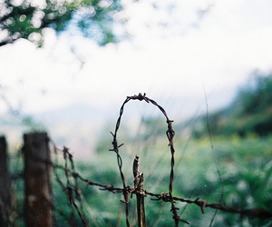 awesome, fence, and photography image
