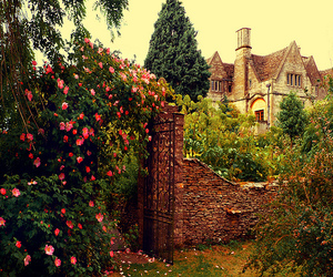 flowers, garden, and house image
