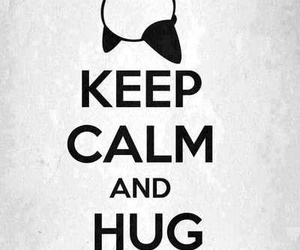 panda, hug, and keep calm image