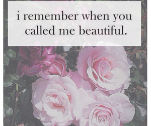 beautiful, quote, and rose image