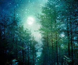 forest, stars, and moon image
