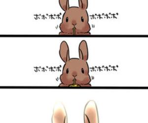 イラスト, うさぎ, and 動物 image