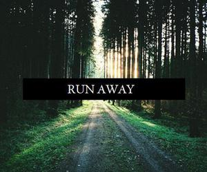 run away, forest, and hipster image
