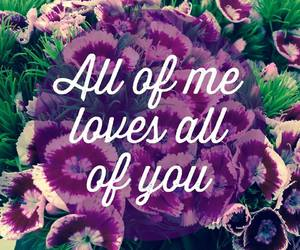 love, flowers, and all of me image