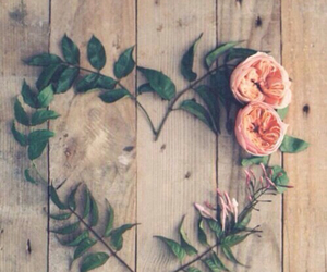 flowers, heart, and rose image