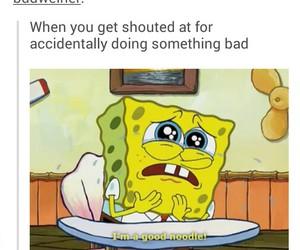 funny, spongebob, and noodles image