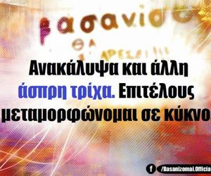 funny picture, quotes, and greek quotes image