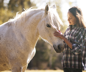 girl, portrait, and horse image