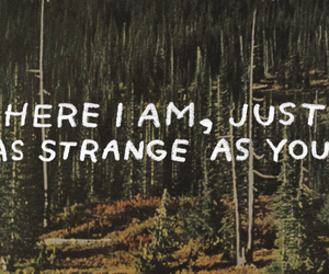 grunge, quote, and strange image