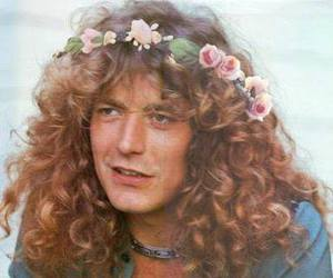 robert plant, flowers, and led zeppelin image