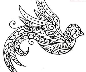 bird, design, and outline image