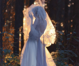 dress, forest, and woods image