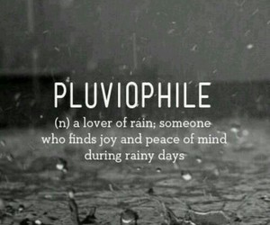 quotes, rain, and lluvia image