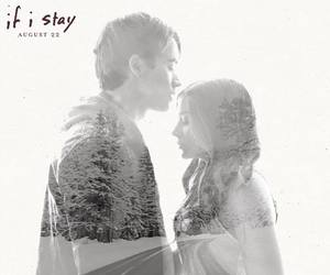 if i stay and book image
