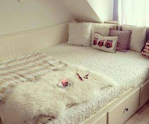 bed, owls, and room image