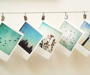 creativity, pictures, and polaroid image