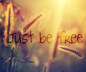 free, quotes, and freedom image