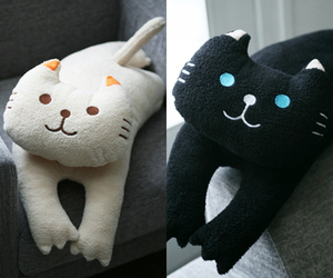 :3, black, and cat image