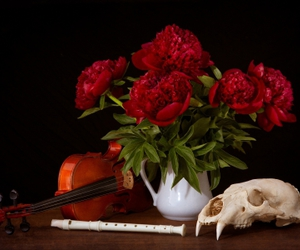 flute, still life, and music image