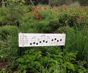 music, parsley, and rosemary image