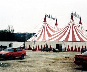 circus, red, and white image