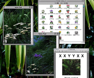 indie, pale, and plants image