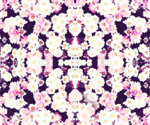 Distort, flowers, and margherite image