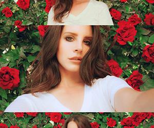 lana del rey, rose, and Queen image
