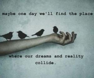 birds, hand, and dreams image